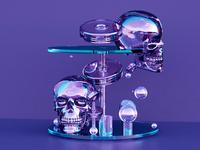 –Skull Exhibit