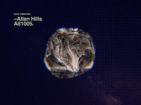 –Allan Hills A81005.