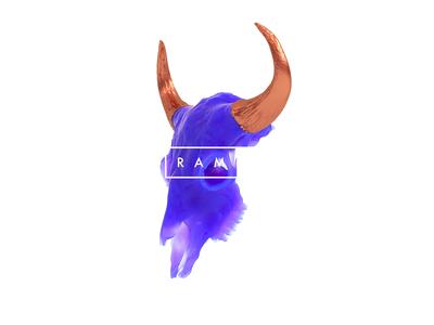 RAM X