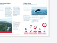 Brochure layout for a clean energy company 2