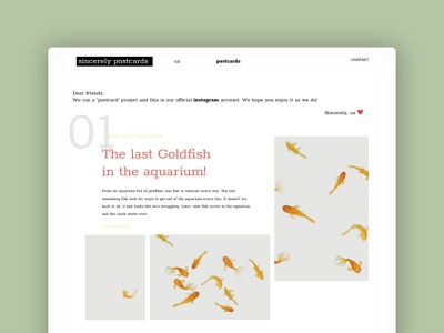 Sincerely Postcards 3   Website Design website design website uiux uidesign figmadesign figma ui illustration illustrator design