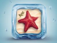 Sea star 1000x750