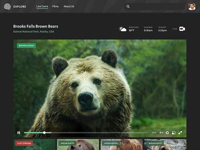 Explore redesign environmentalism conservation animals green explore ui nature