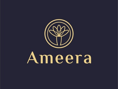 logo ameera typography branding coreldraw logo website illustration flatdesign uiux ui design