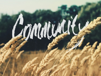 Community community wheat banner hand-drawn type
