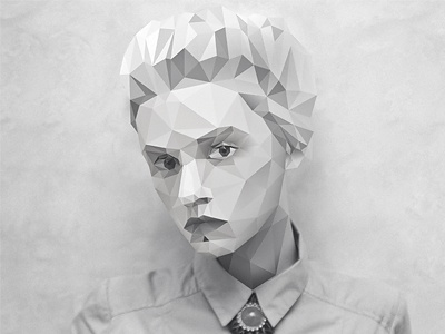 Juliia Oh illustration polygonal