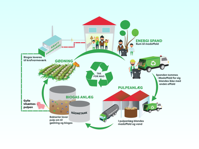 Recycling Infographic | Kerteminde Forsyning vector illustration vector illustrator recycling illustration guide instruction infographic illustration green solutions graphic design environmentally friendly design colorful