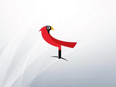 Cardinal red bird cardinal