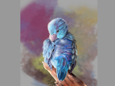 Little blue bird digital drawing feather illustration photoshop animals lover animal digital painting bird blue