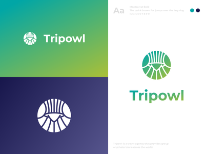 Tripowl - Travel Agency Logo pictorial logo pictorial mark logodesign icon symbol branding travel travel agency logo