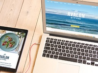 The Avalon on the beach website design