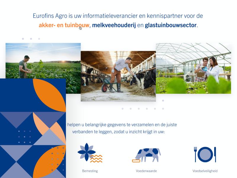Eurofins Web Concept - '19 templates icons orange blue color concept corporate typography website interface identity branding ui minimal grid inspiration design adobexd
