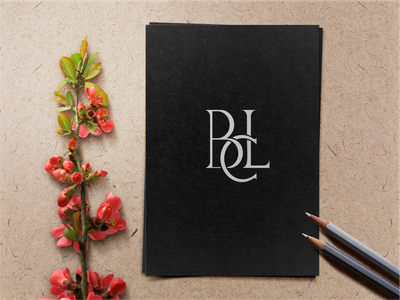 BCL motion graphics graphic design 3d animation ui illustration design monogramlogo logo company logodesign branding corporatedesign company logo monogrampixel