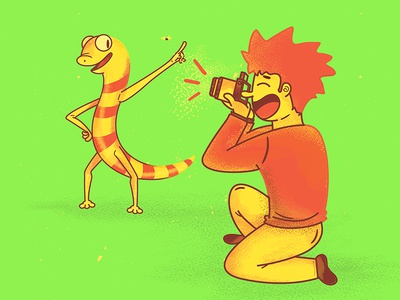 How to take a photo of a gecko