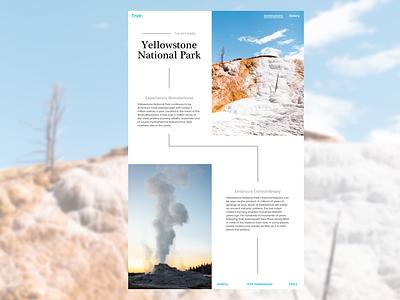 Travel Destination ux ui interface design daily ui concept national parks yellowstone destination traveling travel