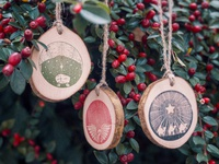 Illustrated Christmas Ornaments