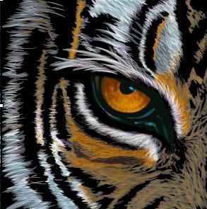 Tiger illustrator vector tiger illustration