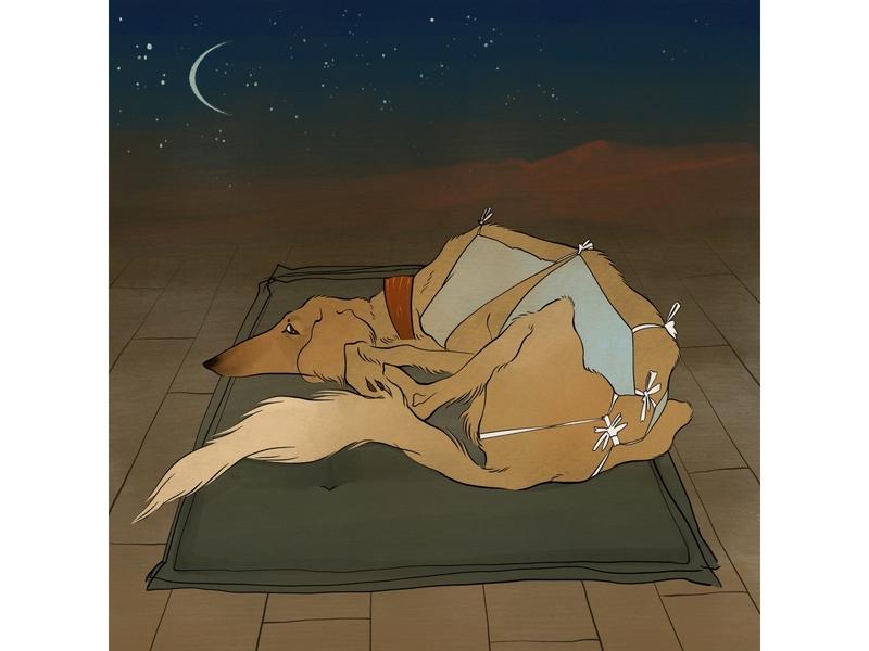 Saluki landscape sand desert sleep borzoi saluki greyhound deerhound hound dog animal character night illustration procreate