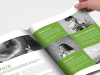 New flat and green Brochure Template