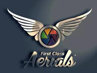 Business Arials logo design