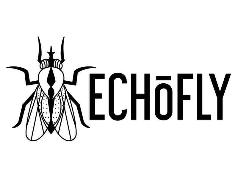 Logo Design Echofly