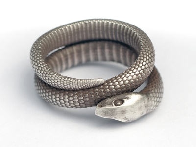 Snake Ring 3d 3d printing shapeways jewelry ring silver animal snake