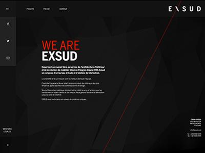 Exsud website