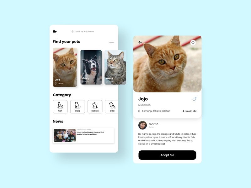 Pet Adoption UI care animal adopt app uidesign ux ui