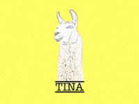 Tina JS
