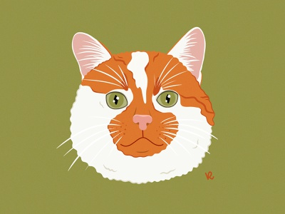 Ernis catlady infinite painter illustrator vilnius icon furry kitty drawing adopted lithuania cute cat animal portrait ginger cat illustration