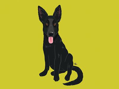 Alaska animal illustration digital drawing icon portrait photoshop vilnius lithuania big ears infinite painter illustraion cute black german shepherd puppy dog