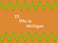 Book Cover: 25 IPAs in Michigan