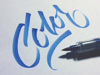 Color typography lettering brushpen fonts font dexsarharry majestype logo identity