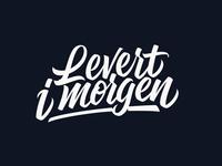Levert i morgen Logo