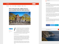 Single Article Page