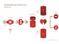 Winemaking process (red wine)