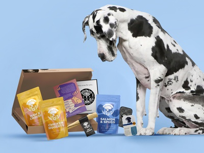 Frank's Subscription Box belfast snack treat great dane c4d mockup pouch packaging subscription subscription box food