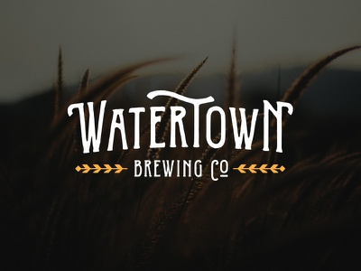 Watertown Brewing Company identity brand sd south dakota microbrew wheat beer
