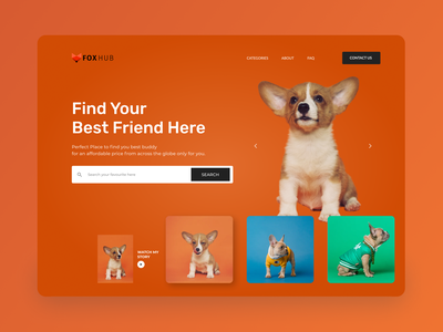 Pet House Homepage UI orange logo orange video search dog webpage web design website petshop pet hero section landing page ux design ui homepage