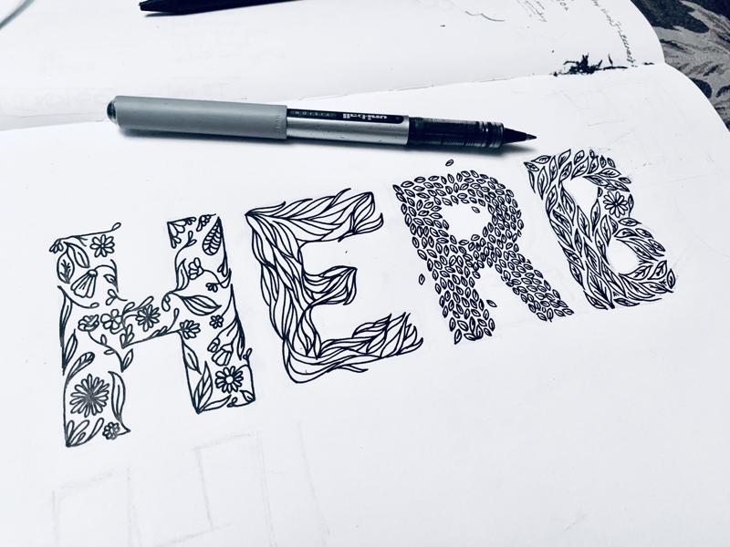 Herb illustrations leaves flowers lines pen work pen illustration natural floral herb sketching sketches drawing
