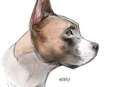 Sketch of my dog, buster