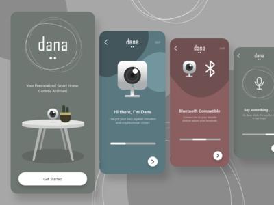 Dana logo minimal illustration app art redesign flat ui ux design