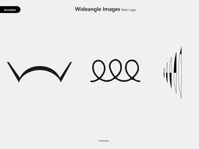 Wideangle Logo branding logo