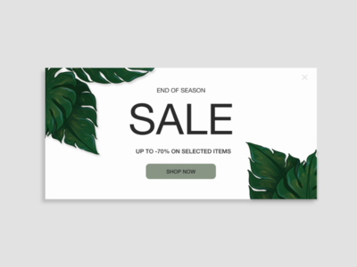 Daily UI Day 036: Special Offer