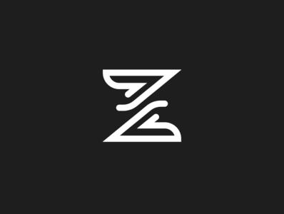 Z Exploration