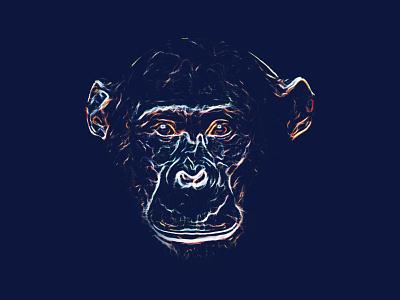 Caesar illustration chimpanzee