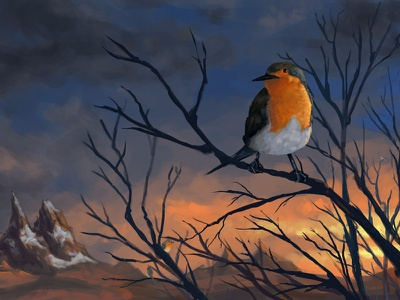 Robins art concept concept art landscape illustration design