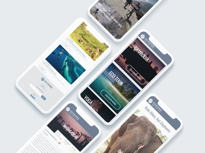 Mobile Version for Seeachange Website responsive design branding