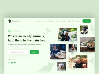 NGO Landing Page uiux animal rescue donation donation website collage website collage green website clean website clean minimal animal non profit organization non profit ngo landing design animals website landing page design landing page