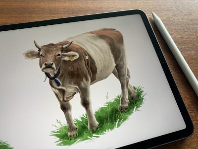 cO_Ow 1  🐄 pankaj juvekar switzerland procreateapp ipadproart ipad pro illustration art procreate art procreate ipadpro drawing illustrator illustration cow